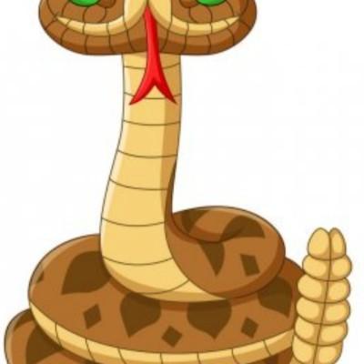 Tugun Brown Snakes